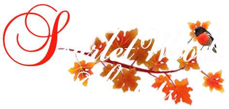 scarlet woods chalets pemberton rh scarletwoods com au